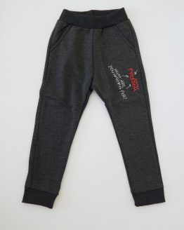 https://funnybunnykids.bg/wp-content/uploads/2018/10/детски-панталон-анцуг-долнище-за-момче-с-лека-вата-момче-графитен.jpg детски панталон анцуг долнище за момче с лека вата момче графитен